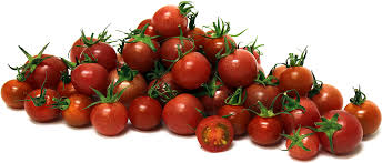 Image result for hubbard and tomatoes
