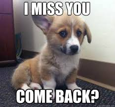 Miss You Corgi memes | quickmeme via Relatably.com