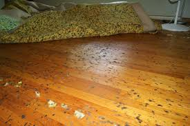 Image result for carpet flooring