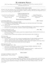 vice president resume vice_president_resume_example sample resume executive
