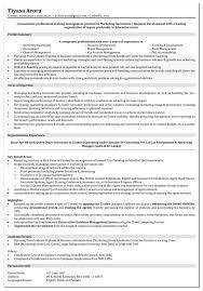 digital marketing skills for resume digital marketing resume ceo digital marketing skills for resume
