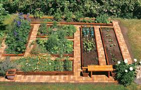 Small Picture Modren How To Build A Raised Bed Vegetable Garden On Inspiration