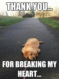 Sad Dog memes | quickmeme via Relatably.com