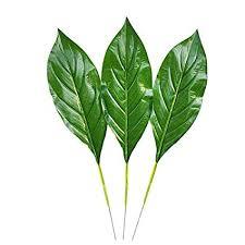 artificial leaf fake leaf