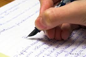 english amp science essay  durdgereportwebfccom english amp science essay