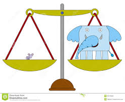 Image result for mouse and elephant uneven scales pictures