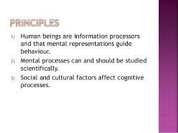 effect essay outline Study com developmental psychology research paper topics   Elaborate Developmental Psychology Research Paper Topics