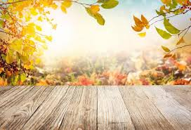 Laeacco Autumn Yellow <b>Leaves</b> Light Bokeh <b>Wooden</b> Floor ...
