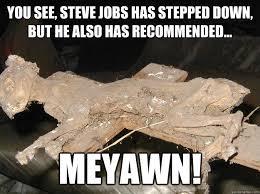 Uninterested Mummy Cat memes | quickmeme via Relatably.com
