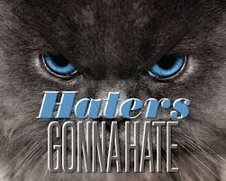 The Meaning and Usage of '<b>Haters Gonna Hate</b>'