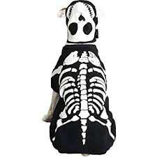 Casual Canine Cotton Glow Bones <b>Dog</b> Costume, Medium, <b>16-Inch</b>