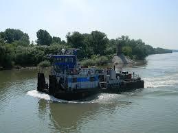 Timiș River