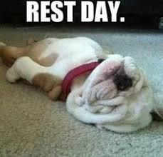 Rest Days on Pinterest | Gym Humor, Gym Humour and Gym Memes via Relatably.com