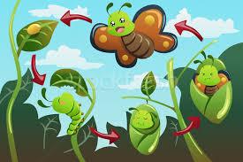 Resultado de imagem para desenhos de lagartas