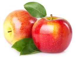 Znalezione obrazy dla zapytania jabłka