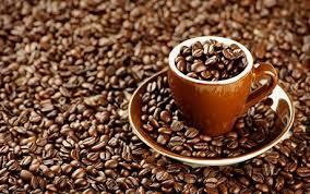 تعلم استثمار القهوة افضل استثمار images?q=tbn:ANd9GcQn0qKVvrgRmUzP1FZQfDXn3-nlFeRP76j5HuCX3Vme0Fexj6fbIg