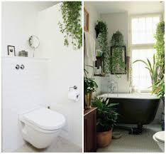 stylish beautiful indoor house plants ideas home interior design with bathroom plants bathroom incredible white bathroom interior nuance