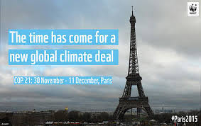 Image result for cop21 pics