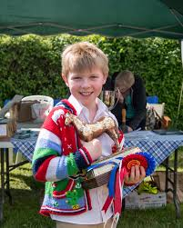 jeannie knight author at jeannie s equestrian world page 30 of 178 beanie drew 10 of cobbes meadow rda his trophy