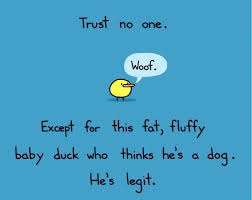 Trust no one | Funny Dirty Adult Jokes, Memes & Pictures via Relatably.com