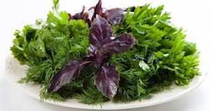 <b>Растение ЭкоДом Гурмэ</b> Set Ароматные Травы Кинза, Петрушка ...