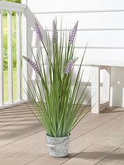 "Декоративное растение ""<b>Романс</b>"" Frank 7154771 в интернет ..."
