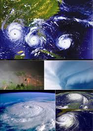 「typhoon Wilma」の画像検索結果