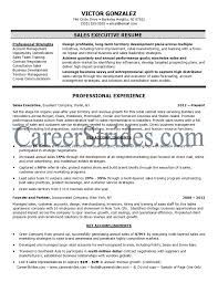 s executive resume sample example  examples of executive     s executive resume sample example