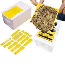 1 Box 2 pcs <b>Beekeeping</b> Grafting Tool <b>Bee</b> Queen Larva Apiculture ...
