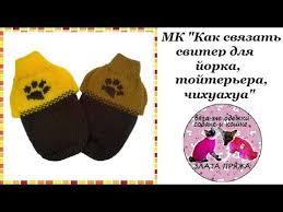 <b>Свитера</b> для собак купить в Тюмени 🥇
