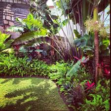 Small Picture Tropical garden great for along back fence gardens for home