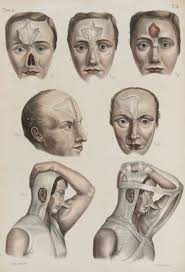 friday essay the ugly history of cosmetic surgery jean baptiste marc bourgery and nicholas henri jacob iconografia d anatomia chirurgica e di medicina operatoria florence 1841