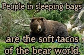 Bear Meme People is sleeping bags are the soft... via Relatably.com