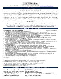 Sales Professional Resume  sales resume  resume and retail on     happytom co professional sales resumes   Template   sales professional resume
