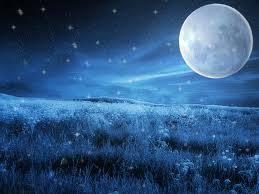 Resultado de imagem para lua cheia site rakel possi