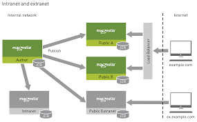 diagrams   magnolia core   documentation   magnoliathis diagram shows a possible placement strategy where a public extranet instance resides on its own instance and has its own url