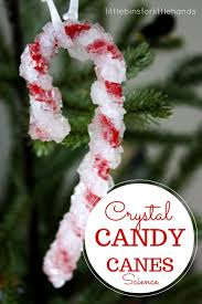 crystal candy canes christmas science experiment activities christmas crystal candy canes science activity christmas chemistry experiment exploring suspension holiday christmas stem