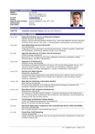 Format Resume Sample      basic