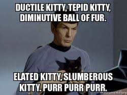 Ductile kitty, tepid kitty, Diminutive ball of fur. Elated kitty ... via Relatably.com