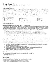 free accounting technician resume example