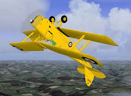 Image result for tiger moth aircraft image
