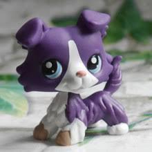 В руке оригинальный Виноград фиолетовый колли <b>собака</b> пуби ...