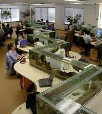zig zag office aquarium also a desk divider 1 aquarium office