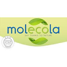 Читайте отзывы о <b>Molecola</b> на ECOgolik.ru