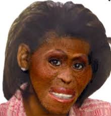Image result for Michelle Obama AS an ape PHOTO