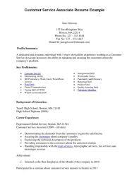customer service summary resume sample resume for customer service customer service summary resume sample resume for customer service customer service representative resume summary customer service representative resume