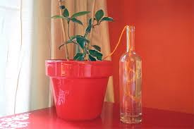 How to Water Plants While Away | <b>Automatic Plant Watering</b> System