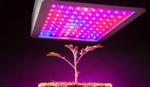 Best <b>Full Spectrum Led Grow</b> Lights of 2019: Reviews The Authentic ...