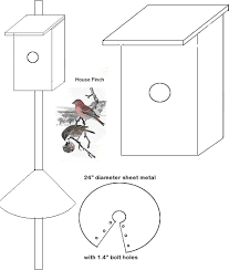 Bird Houses  amp amp  Nesting Box Woodworking Plan  House FinchesHouse Finch Nest Box
