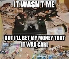 Guilty dog memes | quickmeme via Relatably.com